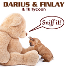 DARIUS & FINLAY & TK TYCOON-Sniff It