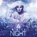 BENJAMIN ZANE & CHRIS CAGE-Winter Night