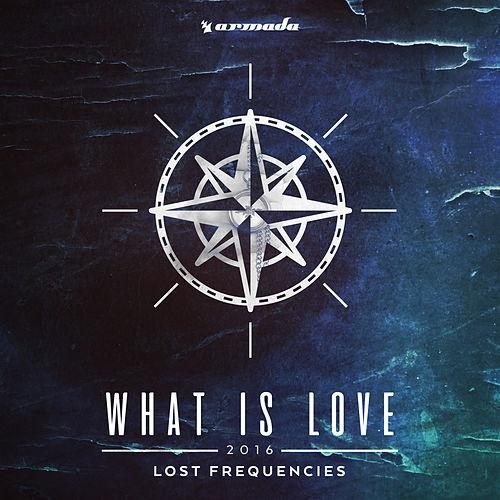 LOST FREQUENCIES-What Is Love 2016