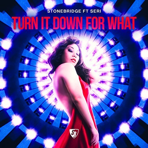 STONEBRIDGE FEAT. SERI-Turn It Down For What