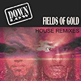 DOWN LOW-Fields Of Gold (Remixe 2k17)