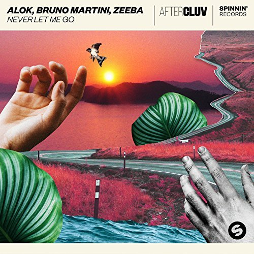 ALOK, BRUNO MARTINI, ZEEBA-Never Let Me Go