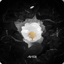 AVICII FEAT SANDRO CAVAZZA-Without You