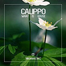 CALIPPO-What Is House