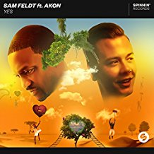SAM FELDT FEAT. AKON-Yes
