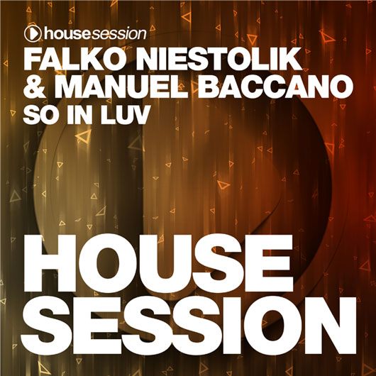 FALKO NIESTOLIK & MANUEL BACCANO-So In Luv