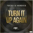 TECAY & VANDICE-Turn It Up Again