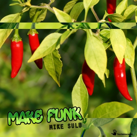 MIKE SULU-Make Funk