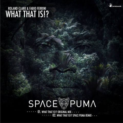 ROLAND CLARK & FABIO FERRINI-What That Is (space Puma Remix)