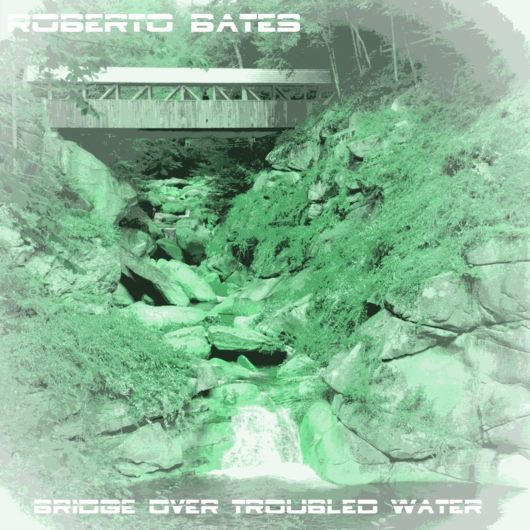 ROBERTO BATES FEAT. VIOLA-Bridge Over Troubled Water