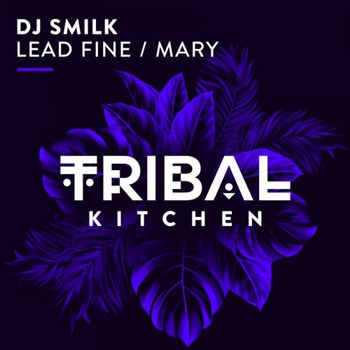 DJ SMILK-Lead Fine