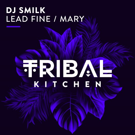 DJ SMILK-Lead Fine / Mary