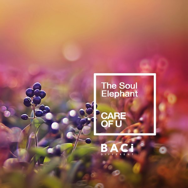 THE SOUL ELEPHANT-Care Of U