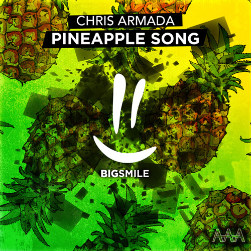 CHRIS ARMADA-Pineapple Song