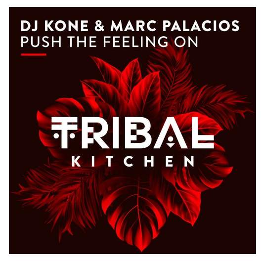 DJ KONE & MARC PALACIOS-Push The Feeling On (Block & Crown Remix)