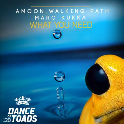 AMOON WALKING PATH MARC KUKKA-What You Need