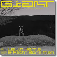 CALVIN HARRIS & RAG´N´BONE MAN-Giant
