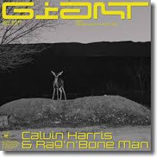 CALVIN HARRIS & RAG´N´BONE MAN-Giant