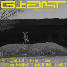 CALVIN HARRIS, RAG´N´BONE MAN-Giant