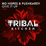 NO HOPES & PUSHKAREV-Give It Up