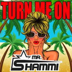 MR. SHAMMI-Turn Me On