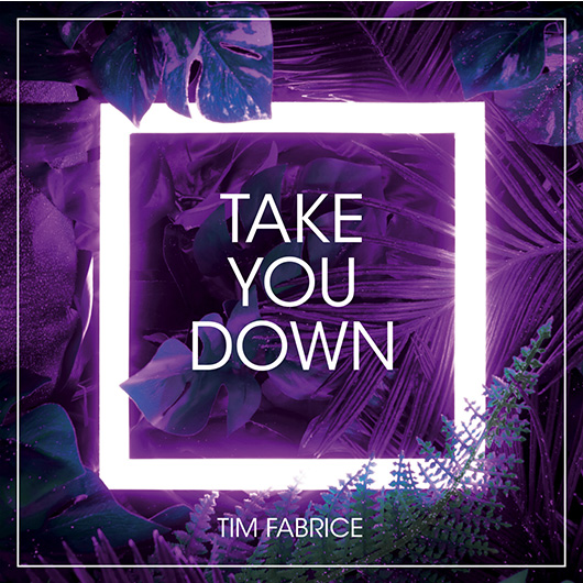 TIM FABRICE-Take You Down