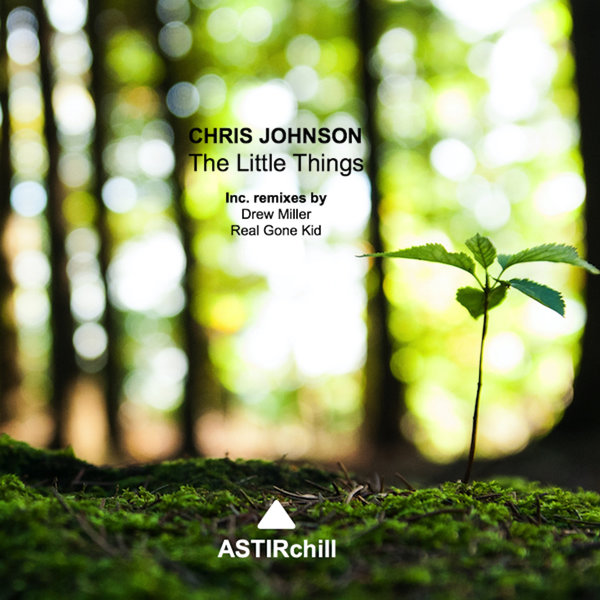 CHRIS JOHNSON-The Little Things
