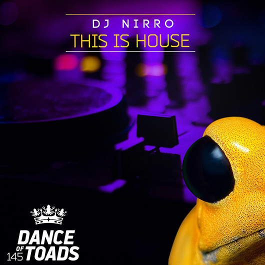 DJ NIRRO-This Is House