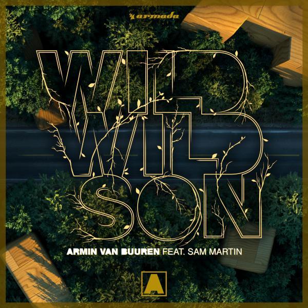 ARMIN VAN BUUREN FEAT. SAM MARTIN-Wild Wild Son