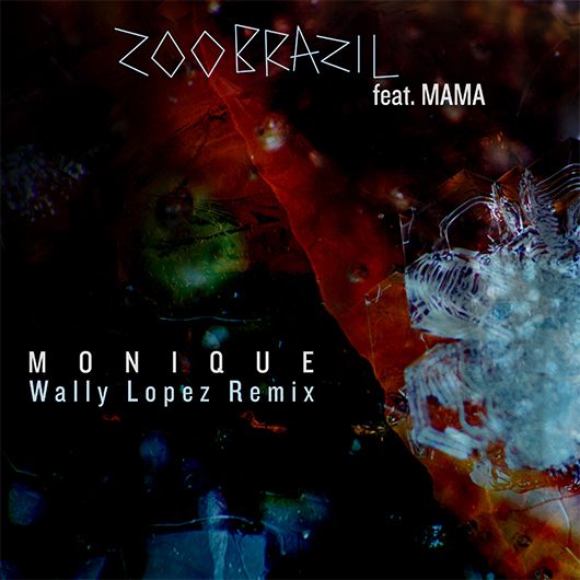 ZOO BRAZIL FEATURING MAMA-Monique (wally Lopez Remix)