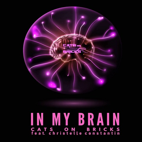 CATS ON BRICKS FEAT. CHRISTELLE CONSTANTIN-In My Brain (Chris Cooper 2020 Remix)