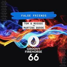 TOM & MOSSEE VS. MARTINA BUDDE-False Friends