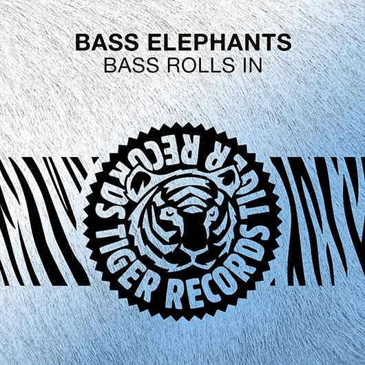 BASS ELEPHANTS-Bass Rolls In