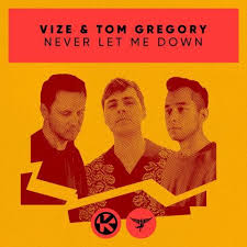 VIZE & TOM GREGORY-Never Let Me Down