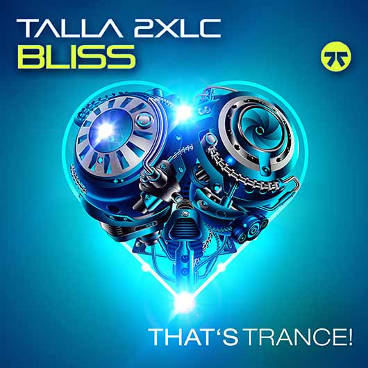 TALLA 2XLC-Bliss