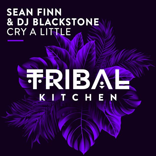 SEAN FINN & DJ BLACKSTONE-Cry A Little