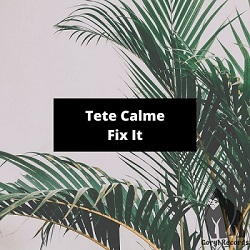 TETE CALME-Fix It