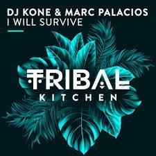 DJ KONE & MARC PALACIOS-I Will Survive