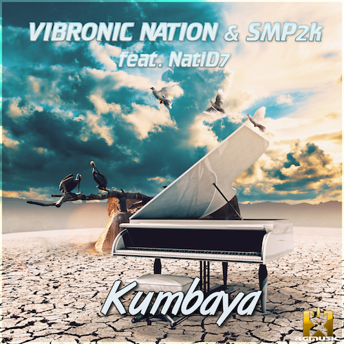 VIBRONIC NATION & SMP2K FEAT NATID7-Kumbaya