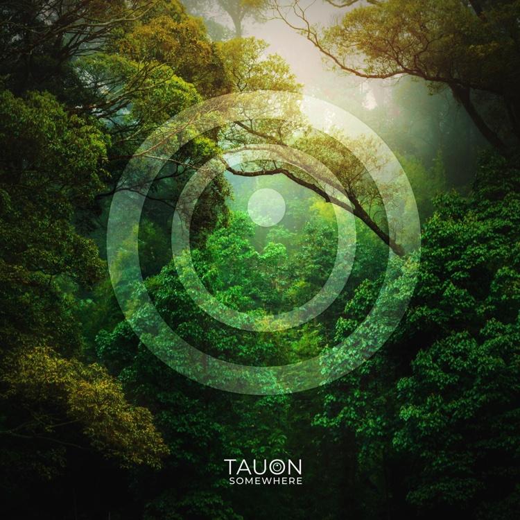 TAUON-Somewhere
