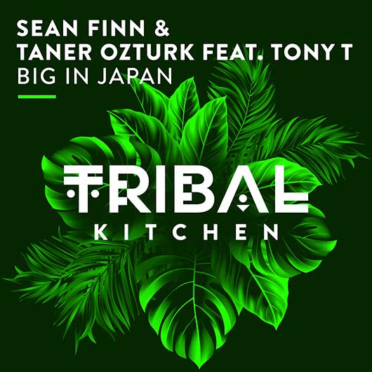 SEAN FINN & TANER OZTURK FEAT. TONY T-Big In Japan