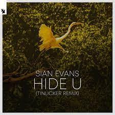 SIAN EVANS-Hide You (tinlicker Remix)
