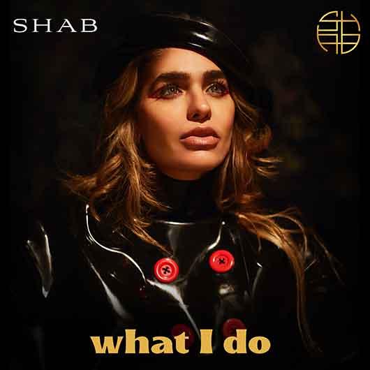 SHAB-What I Do