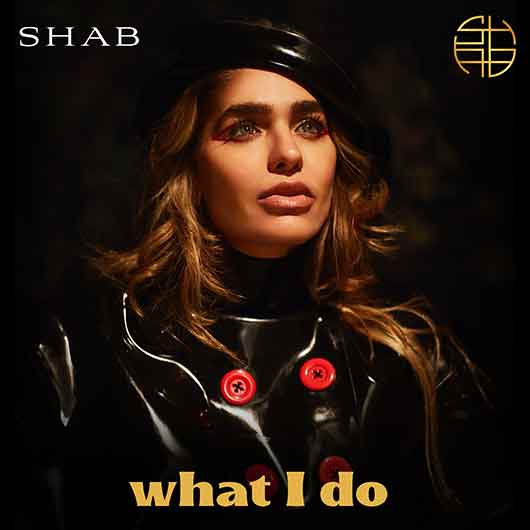 SHAB-What I Do