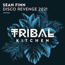 SEAN FINN-Disco Revenge 2021