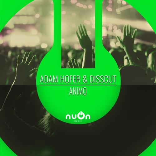 ADAM HOFER & DISSCUT-Animo