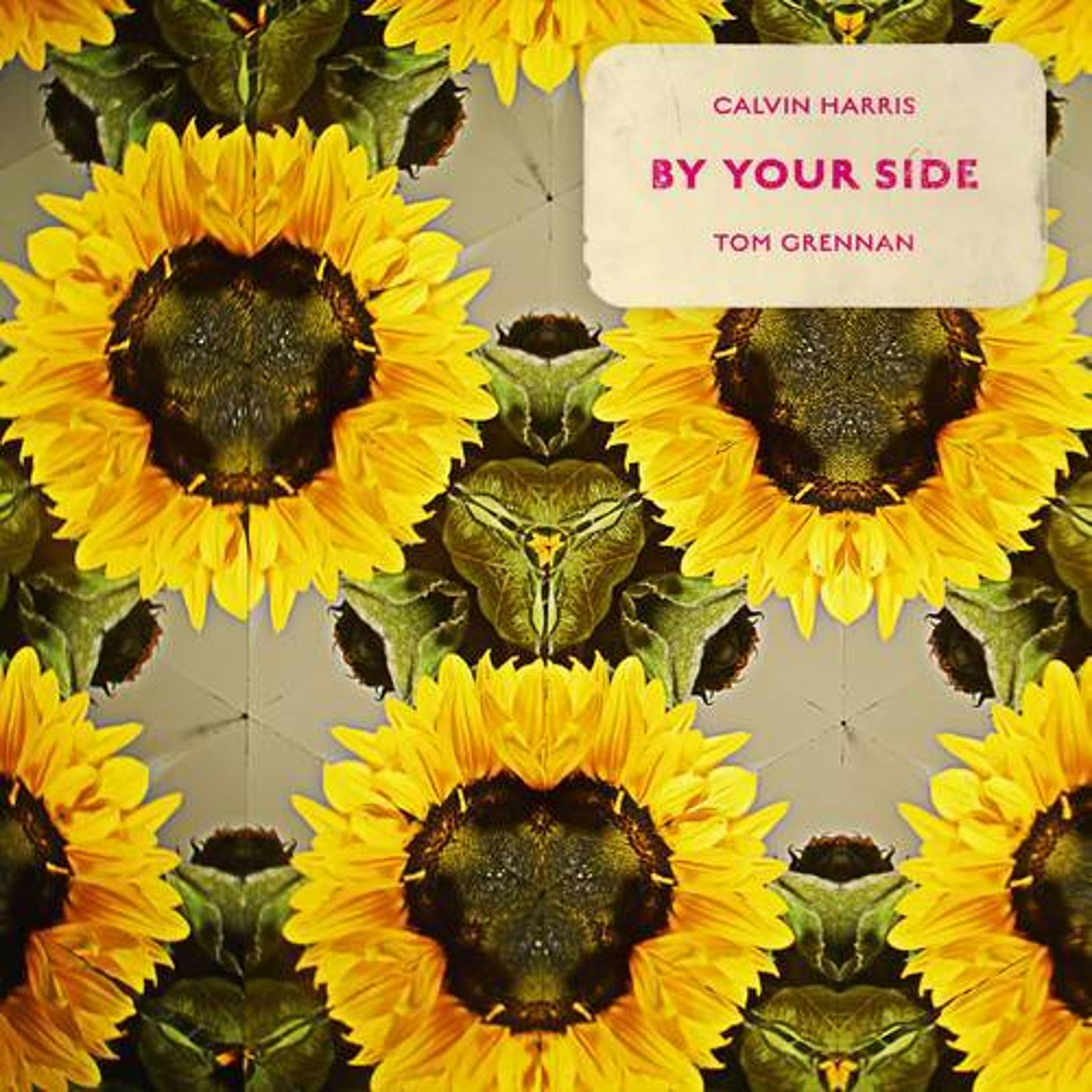CALVIN HARRIS FT. TOM GRENNAN-By Your Side