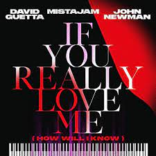 DAVID GUETTA, MISTAJAM, JOHN NEWMAN-If You Really Love Me (how will i know)