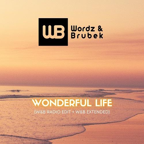 WORDZ & BRUBEK-Wonderful Life ( W&b Edit )