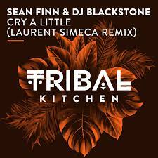 SEAN FINN & DJ BLACKSTONE-Cry A Little (laurent Simeca Remix)